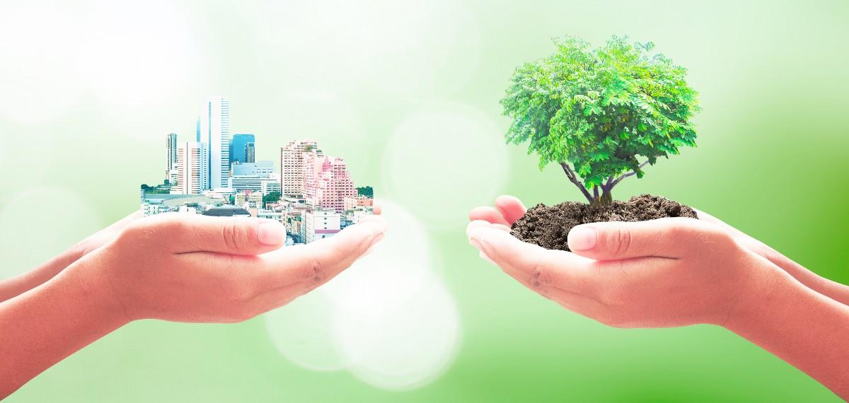 יזמות בקיבוצים: ממרחב כפרי נאיבי למרחב עסקי פורה